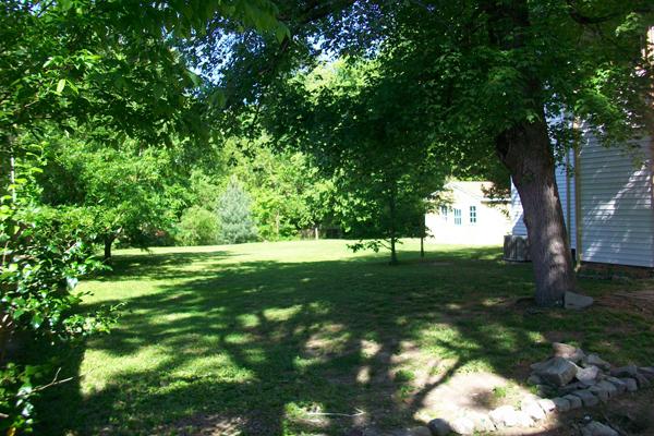 FROG Roanoke side yard